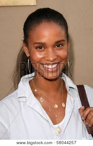 Joy Bryant  at the 2nd Annual Design for Humanity Event. Spider Club, Hollywood, CA. 06-04-08