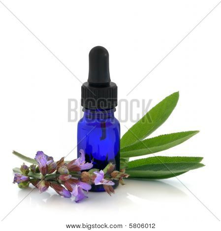 Sage Herb Therapy