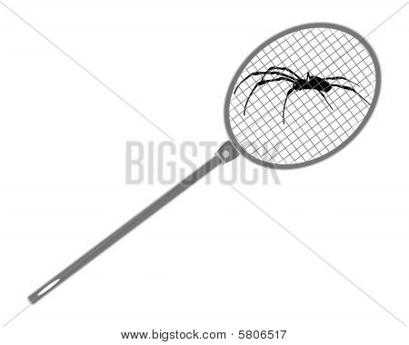 The Illustration Of A Fly Swat Above Spider