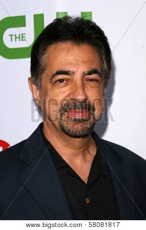 Joe Mantegna  at the CBS, CW and Showtime Press Tour Stars Party, Boulevard3, Hollywood, CA. 07-18-08