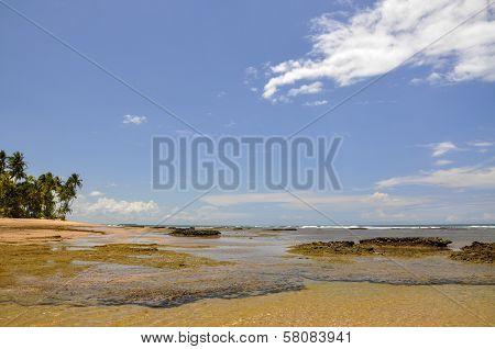 Beach Of Taipu De Fora (brazil)
