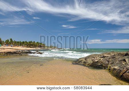 Beach Of Praia Do Forte, Salvador De Bahia (brazil)