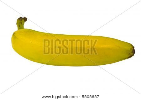 Isolated Single Banana Fruit