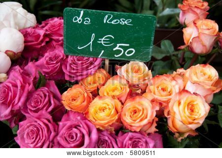 Roses With French Price In Euros