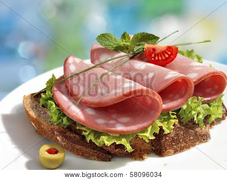 Delicious sandwich with sausage and greens