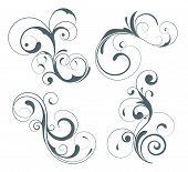 stock photo of flourish  - Vector illustration set of four swirling flourishes decorative floral elements - JPG