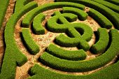 image of maze  - Path to Financial Freedom - JPG