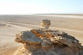 foto of tozeur  - Camel head rock one of the tourist stops in Ong Jemel TozeurTunisia - JPG