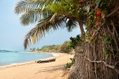 stock photo of om  - Tropical Om beach and coconut palm trees near the blue ocean in Gokarna Karnataka India - JPG