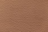 picture of bump  - Macro photo brown leather pattern background texture - JPG