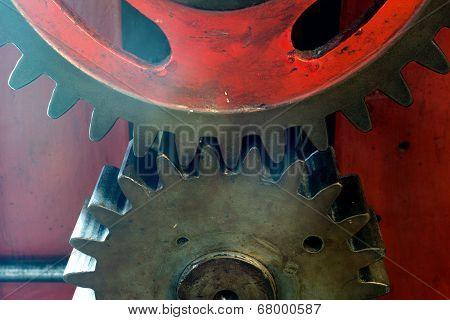 Pinion Gear Of A Mechanical Machine