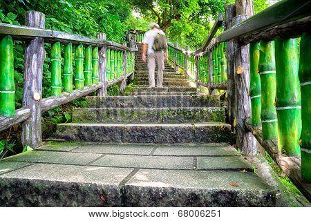 Mountain Trail in Taipei - Taiwan.