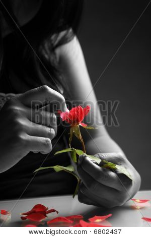 Broken Heart Girl Picking Rose Petals