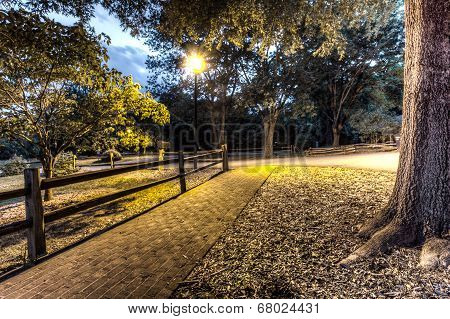 Night in a park.