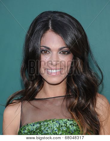 LOS ANGELES - JUL 08:  Lindsay Hartley arrives to the Hallmark's