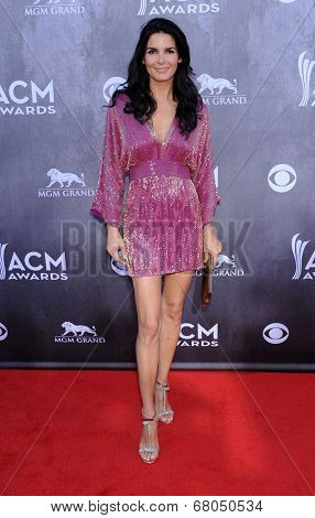 LOS ANGELES - APR 06:  Angie Harmon arrives to the 49th Annual Academy of Country Music Awards   on April 06, 2014 in Las Vegas, NV.