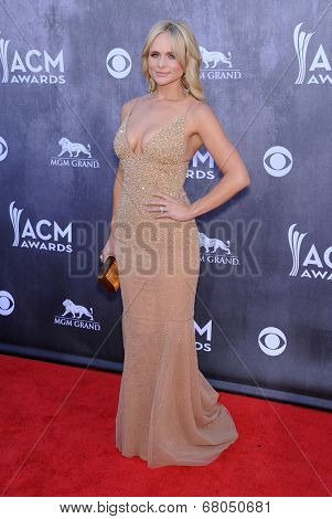 LOS ANGELES - APR 06:  Miranda Lambert arrives to the 49th Annual Academy of Country Music Awards   on April 06, 2014 in Las Vegas, NV.