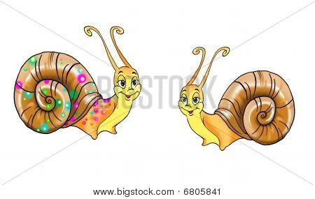 Dos caracoles