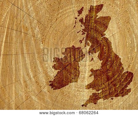 Tree trunk overlaid with outline map of UK and Ireland