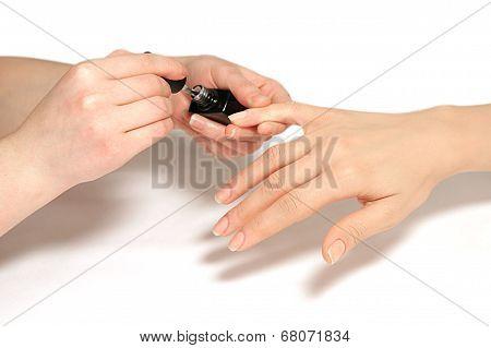 Manicure nail paint application color