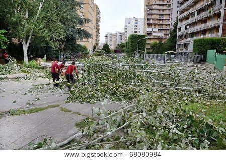 Tree Broken