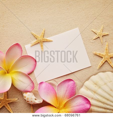 shells on sand and blank note card as a summer frame