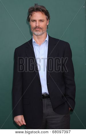 LOS ANGELES - JUL 8:  Dylan Neal at the Crown Media Networks July 2014 TCA Party at the Private Estate on July 8, 2014 in Beverly Hills, CA