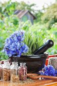 foto of hyssop  - mortar with blue cornflowers and sage on windowsill herbal medicine - JPG