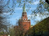 picture of trinity  - Moscow Kremlin view from Alexandrovsky garden. Trinity Tower is the tallest tower of the Kremlin.