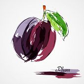 picture of lilas  - Hand drawn vector purple plum ripe fruit on light background - JPG