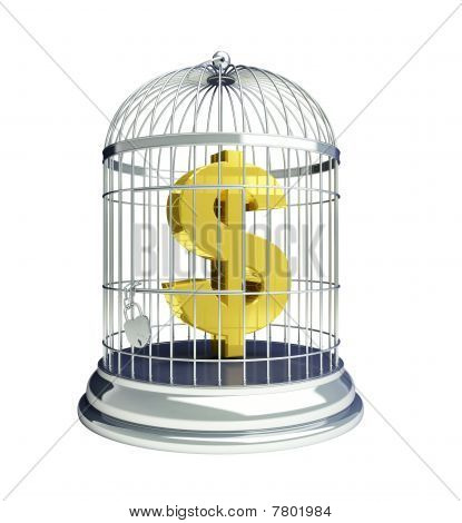 dollar in a cage for birds