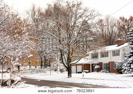 Winter Neighborhood Street Scene