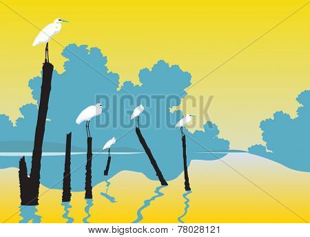 Editable vector illustration of white egrets perched on poles in a lake