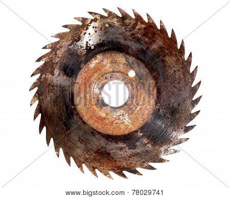 Saw Blade Circular Rusted Isolated Sharp