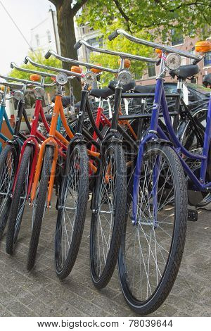 Color Bicycles In Amsterdam