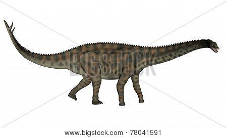 Spinophorosaurus dinosaur walking - 3D render