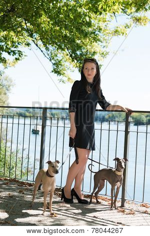 Young Girl  With Two Greyhounds