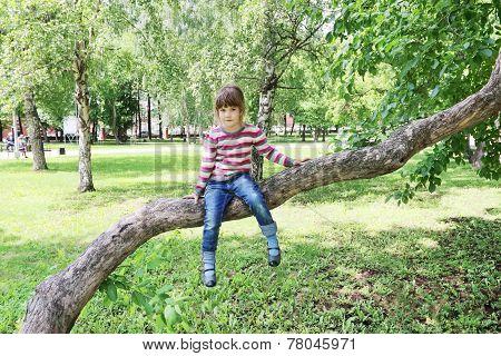 Girl In Striped Sweater Sitting On Tree Trunk