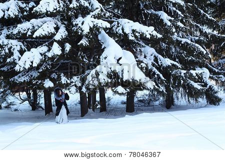 Girl In Fur Coat Hides Under Big Snowy Spruces In Winter Forest