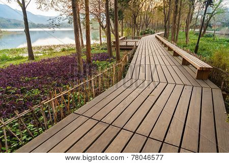 Wooden Pathway On The Coast, Hangzhou City Center, China