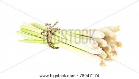 Fresh Lemongrass Vegetable On White