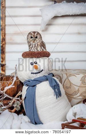 Tawny or Brown Owl, Strix aluco, on snowman