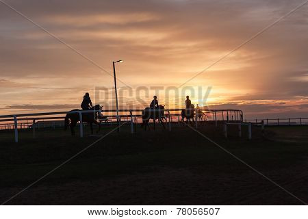 Horses Riders Silhouetted Training Landscape