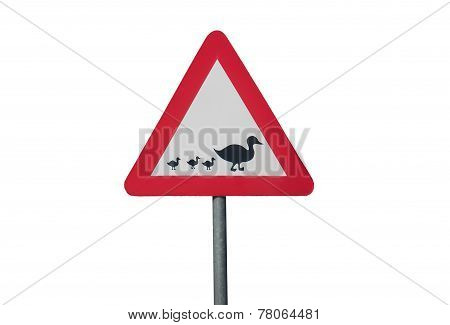 traffic sign with a Duck and three Ducklings