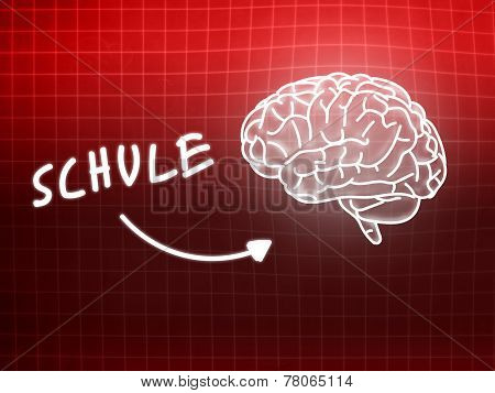 Schule Brain Background Knowledge Science Blackboard Red