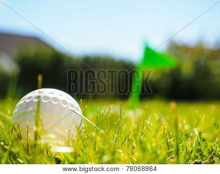 Golf Ball Laying In The Rough