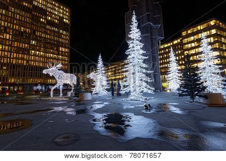 Christmas Moose And Christmas Trees Made Of Light