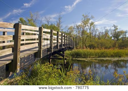 Nature Trail Foot Bridge