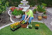 Adult Senior Planting Flowers