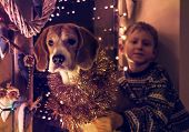 image of christmas dog  - Little boy with his dog sitting on the decorated window for Christmass Eve - JPG
